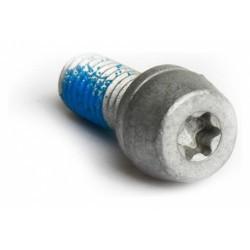 Vis D´étrier PM Magura Aluminium Torx 25 (x10)
