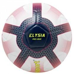 Ballon de football Uhlsport Ligue 1