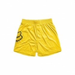 Boxer Fox Jumped Yellow