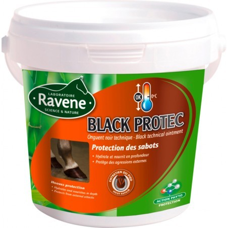 ENTRETIEN.   RAVENE BLACK PROTEC 500 ML