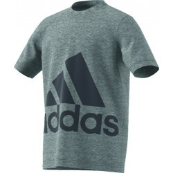1145N-TEXT MS TSHIRT MC G   ADIDAS YB BIG LOGO TEE