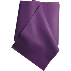 ACCESSOIRE FITNESS   EXCELLERATOR BANDE LATEX NATURELLE LILAS  5,4 KG