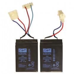 ANATEC Lot de 2 Batteries Pac Boat au plomb - 6V/4,5A