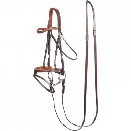 Filet + rênes équitation cheval BDN 580 SUR CH marron