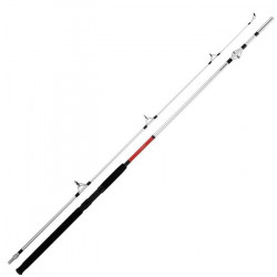 Canne à pêche Daïwa Sensor 200