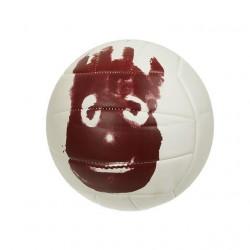 Ballon de volley Mr wilson volley