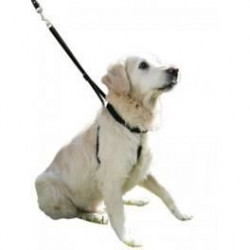 Harnais Dressage Maxi Leader Gentle Dog Noir T 4