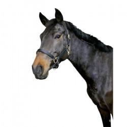 Kerbl  Eco Cuir Licol pour Poulain, Mixte, Eco Leather, Noir, Grösse 00: Fohlen - 327041
