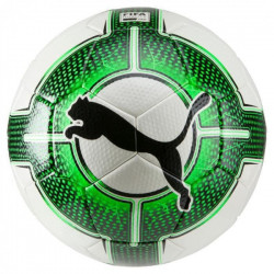 Ballon Puma EvoPower 2.3 - blanc-vert gecko-noir - Taille 5