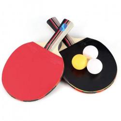 Ensemble de Raquettes de Tennis de Table, 2 Raquettes de Ping-pong à Long Manche avec 3 Balles et un Etui de Transport pour
