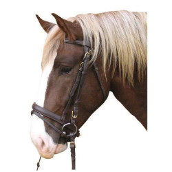 Kerbl 321178 Bridon de cheval de trait en cuir (Noir)
