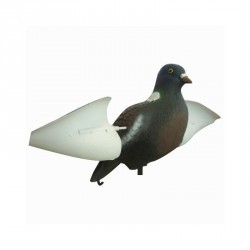 Forme pigeon ailes rotatives
