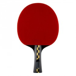 RAQUETTE DE TENNIS DE TABLE JOOLA CARBON PRO 5*