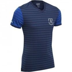 Maillot supporter adulte FP300 France bleu