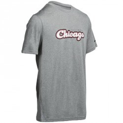 Tee Shirt Basketball homme FAST Chicago gris