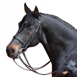 Bride + rênes équitation BEAUVALAIS noir -cheval