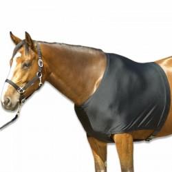 Protection épaules équitation poney et cheval
