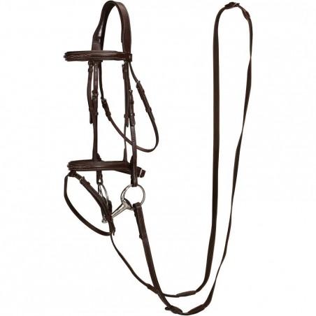 Filet + rênes équitation RECALL marron - poney et cheval