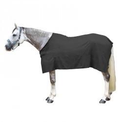 Chemise équitation poney et cheval séchante grise